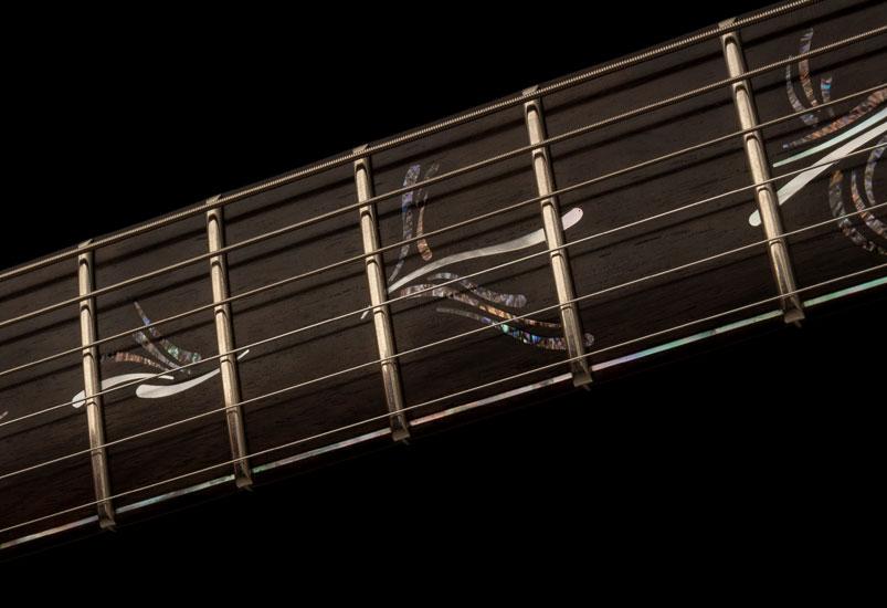 5563 Paul's Graphite Guitar