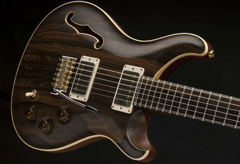 Guitar of the Month April 2016 - DGT Birds of a Feather Semi-Hollow