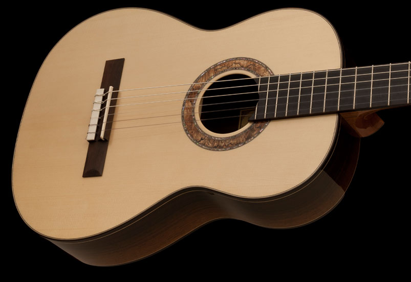 Collection Series 2014 Nylon Acoustic