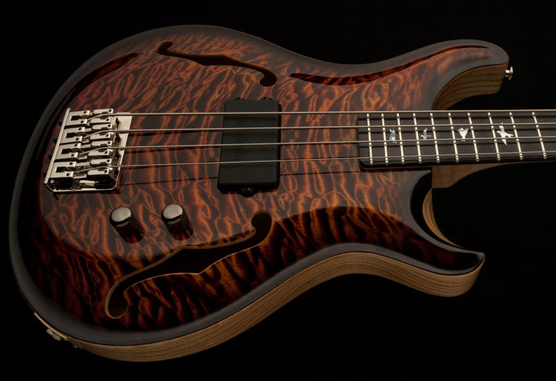 Guitar of the Month January 2016 -  Hollowbody Bass 4