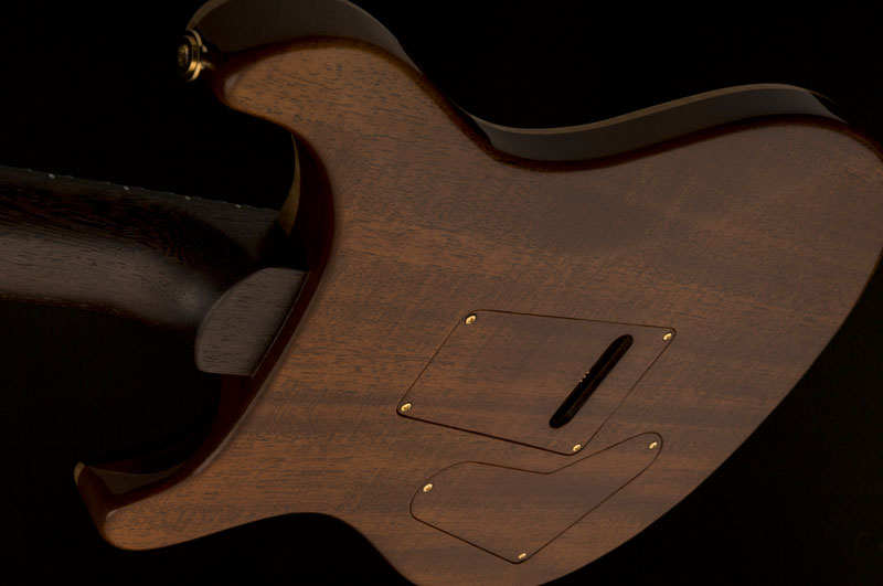 Guitar of The Month October 2016 - Lotus Knot Custom 24